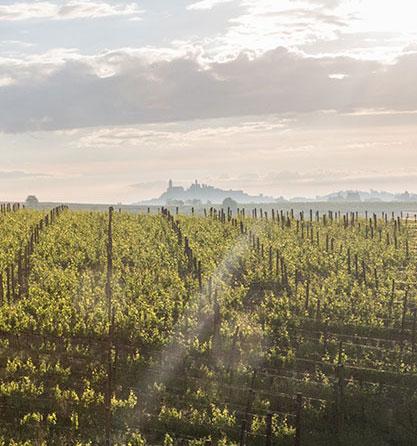 Relais nel Monferrato